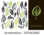 set of hand drawn leaves  green ... | Shutterstock .eps vector #525462685