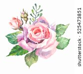 watercolor drawing of pink rose ... | Shutterstock . vector #525473851