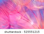 colorful pastel background  ... | Shutterstock . vector #525551215