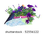 pack of petunias with trowel... | Shutterstock . vector #52556122