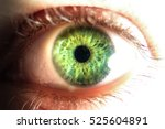 close up of green human eye | Shutterstock . vector #525604891