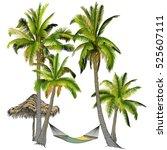 vector illustration on a... | Shutterstock .eps vector #525607111