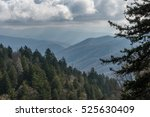 late fall in the great smoky... | Shutterstock . vector #525630409