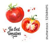 watercolor vegetables... | Shutterstock . vector #525684691