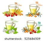 tea time set. vector...   Shutterstock .eps vector #525686509