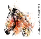 colored hand sketch horses... | Shutterstock .eps vector #525705991