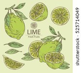 collection of lime and lime... | Shutterstock .eps vector #525714049
