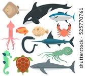 sea wild animals vector... | Shutterstock .eps vector #525770761