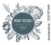design template for vegetables... | Shutterstock .eps vector #525797449