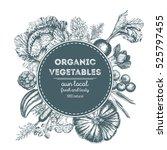 design template for vegetables... | Shutterstock .eps vector #525797455