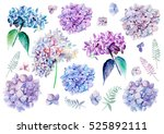 watercolor set with flowers... | Shutterstock . vector #525892111