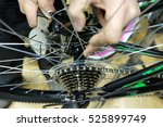 Small photo of Repair and tuning, adjustment, disc brake on a bicycle