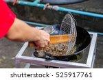frying giant water bug in pan.... | Shutterstock . vector #525917761