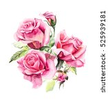 Stock photo  pattern from pink rose wedding drawings watercolor painting greeting cards rose background 525939181