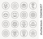 flowers thin line icon set | Shutterstock .eps vector #526036357