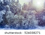 winter landscape trees ... | Shutterstock . vector #526038271