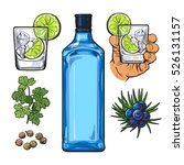 gin bottle  shot glass with ice ...   Shutterstock .eps vector #526131157