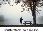 the mist | Shutterstock . vector #526161151