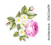 flowers and leaves  watercolor... | Shutterstock . vector #526216639
