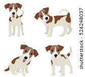 jack russell terrier. vector... | Shutterstock .eps vector #526248037