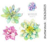 watercolor succulents set. hand ... | Shutterstock . vector #526263025