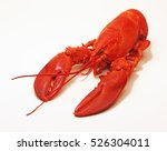 Steamed Lobster.   A Culinary...
