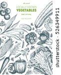 vegetables top view frame.... | Shutterstock .eps vector #526349911