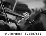 Hands Of A Violinist In The...