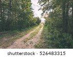 Tourist Trail In Misty Woods...