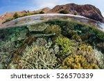 a healthy  biodiverse coral... | Shutterstock . vector #526570339