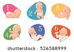 set with cute baby boys and... | Shutterstock .eps vector #526588999