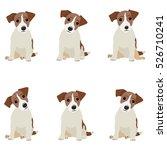 jack russell terrier. vector... | Shutterstock .eps vector #526710241