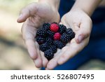 Blackberries And Raspberries...