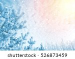 Winter Bright Background. Pine...