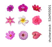 Collection Of Various Pink And...