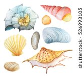 Watercolor Set Of Sea Life...