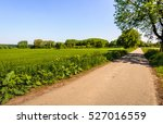 straight and narrow asphalt...   Shutterstock . vector #527016559