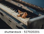 Yellow Leaf On A Piano Keyboard