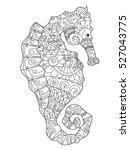 sea horse coloring book for... | Shutterstock . vector #527043775
