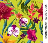 tropical seamless floral... | Shutterstock . vector #527077255