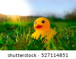 Cute Yellow Rubber Duck...