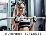 young fitness woman execute... | Shutterstock . vector #527130151