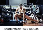 young fitness woman execute... | Shutterstock . vector #527130235