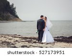 young wedding couple is hugging ... | Shutterstock . vector #527173951