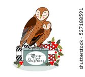 Two Owls Sitting On Christmas...