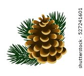 single pinecone and twigs of... | Shutterstock .eps vector #527241601