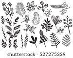 hand drawn vintage floral... | Shutterstock .eps vector #527275339
