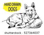 Dog Lying On Pillows. Drawing...