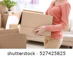 house moving concept. woman... | Shutterstock . vector #527425825