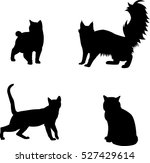 black and white set of... | Shutterstock .eps vector #527429614